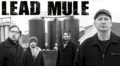 New Music: Lead Mule's 'Parts & Labour'